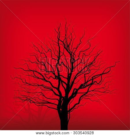 Solitude Old And Scrappy Tree Over Red Background.