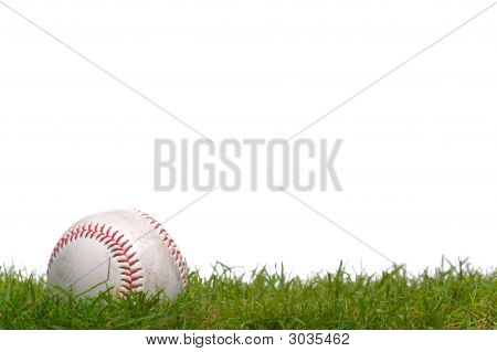 Baseball In The Grass