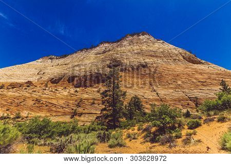 Zion National Park Landscape View In Utah, United States