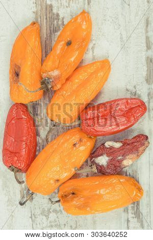 Old, Moldy And Wrinkled Peppers. Concept Of Unhealthy, Decompose, Spoiled Vegetable