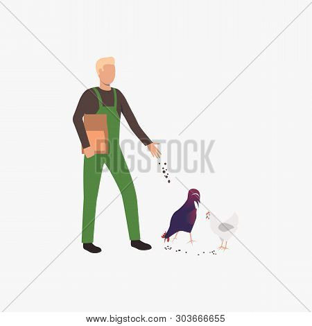 Farmer Feeding Chickens. Hens, Rooster, Pecking. Farming Concept. Vector Illustration Can Be Used Fo