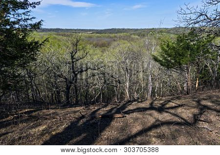 Atop Bluffs Overlooking Forests In Spring At Flandrau State Park Near New Ulm Minnesota