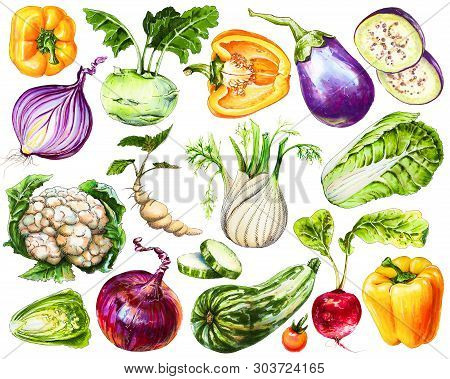 Set Of Fresh Hand-drawn Vegetables. Watercolor Drawing Healthy Food. Image Of Bell Pepper, Onion, Eg