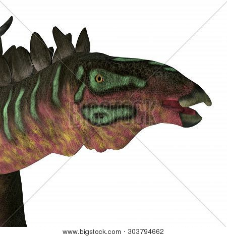 Miragaia Dinosaur Head 3d Illustration - Miragaia Was A Armored Stegosaurid Sauropod Dinosaur That L