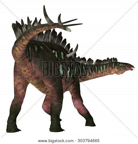 Miragaia Dinosaur Tail 3d Illustration - Miragaia Was A Armored Stegosaurid Sauropod Dinosaur That L