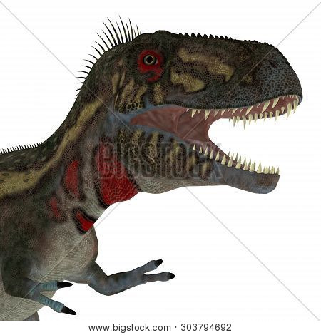 Nanotyrannus Dinosaur Head 3d Illustration - Nanotyrannus Was A Carnivorous Theropod Dinosaur That L