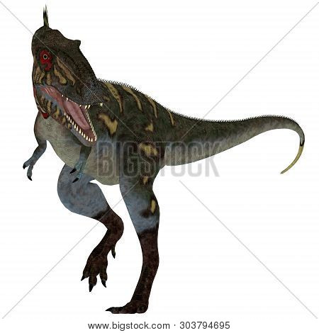 Nanotyrannus Dinosaur On White 3d Illustration - Nanotyrannus Was A Carnivorous Theropod Dinosaur Th