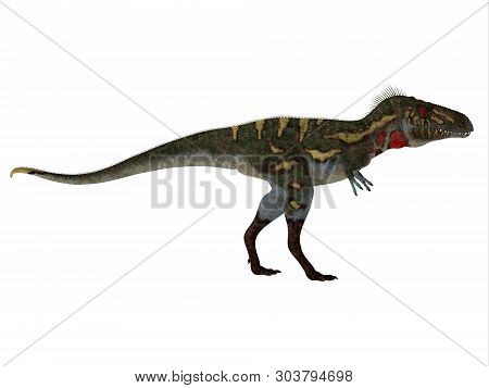 Nanotyrannus Dinosaur Side Profile 3d Illustration - Nanotyrannus Was A Carnivorous Theropod Dinosau