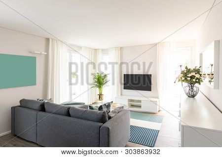 Living room with gray sofa. Modern room and white walls. No one inside