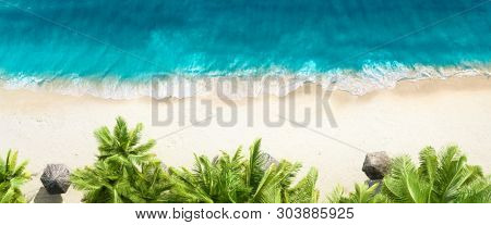 Aerial top view on sand beach,palm tree and ocean