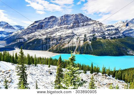 View From Bow Summit Of Peyto Lake In Banff National Park, Alberta,canada