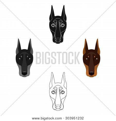 Dog Breed, Doberman.dobermann S Muzzle Single Icon In Cartoon, Black Style Vector Symbol Stock Illus