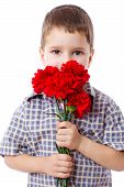 Boy with bouquet of red carnations, isolated on white poster