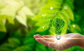 Hand Holding Light Bulb Against Nature On Green Leaf With Icons Energy Sources For Renewable, Sustai