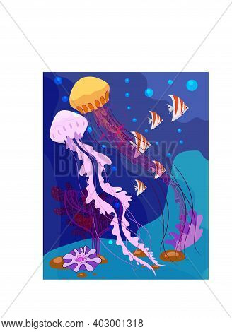 Vector Illustration With Two Jellyfishes Undersea World.