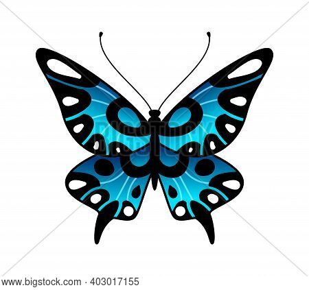 Butterfly. Colorful Stylized Summer Flying Insect, Bright Design In Black And Blue Colors, Minimalis