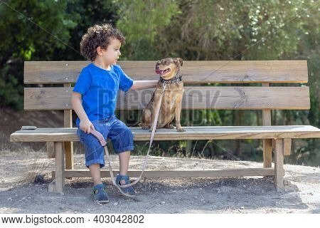 Child Caressing His Puppy With Love On A Wooden Bench In A Natural Park, On A Sunny Summer Day,