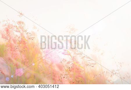 Beautiful Meadow And Sky Against Autumn Landscape Sunrise Background