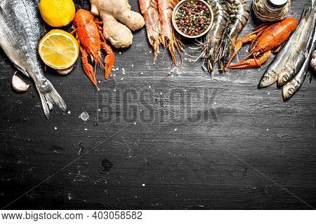 Fresh Seafood. Seafood With And Herbs. On A Black Chalkboard.