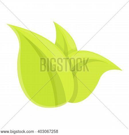 Biodegradable Plastic Leafs Icon. Cartoon Of Biodegradable Plastic Leafs Vector Icon For Web Design