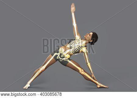 Anatomy Of Yoga, Female In Triangle Yoga Position, Or Trikonasana With Highlighted Skeleton. 3d Illu
