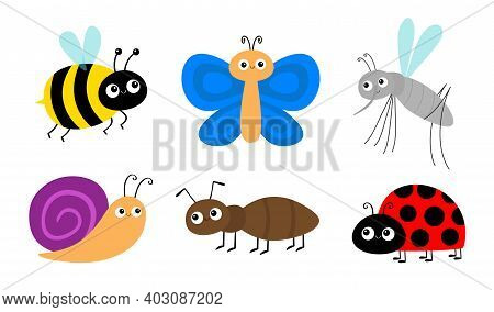 Ant, Mosquito, Bee Bumblebee, Butterfly, Snail Cochlea, Lady Bug Ladybird Insect Icon Set. Ladybug.