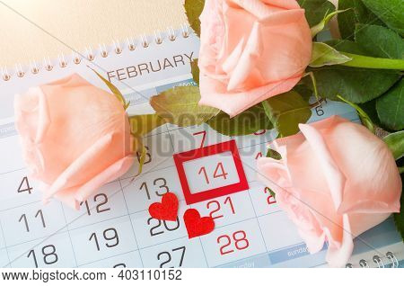 Valentines day background, Valentines day card, festive Valentines day card, festive Valentines day still life. Valentines day composition, roses of light peach color and two red hearts on the calendar with Valentines day date, Valentines day design
