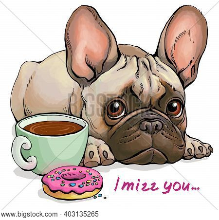 Vector Illustration. Funny Cartoon. Portrait Of A Cute Sad French Bulldog Who Does Not Want Tasty Tr