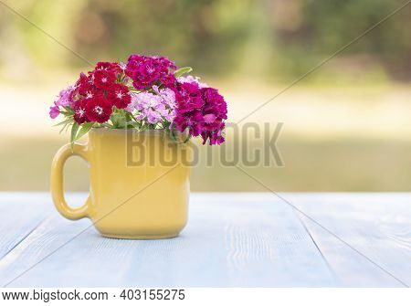 Beautiful Phlox Flowers In A Yellow Glass On A Table In A Summer Garden. Summertime Season. Copy Spa