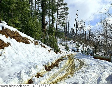 Heavy Snow Fall In Kashmir Made Whole Valley White.