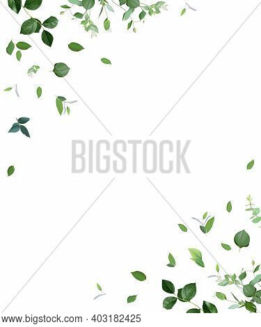 Herbal Minimalist Vector Frame. Hand Painted Plants, Branches, Leaves On A White Background. Greener