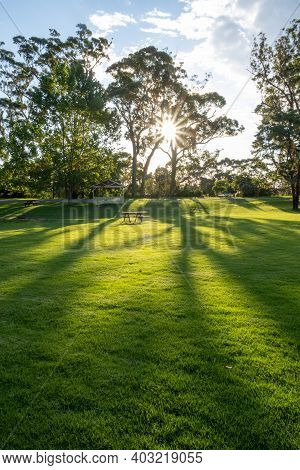 Sun Shining Through Trees With Long Shadows On Green Grass And Picnic Table In Orbost, Australia