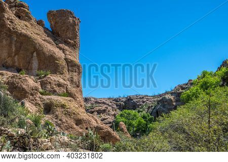 An Overlooking View Of Nature In Boyce Thompson Arboretum Sp, Arizona