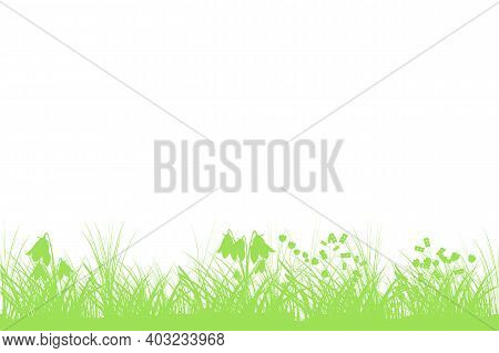 Green Spring Background With Copy Space. Summer Grass Banner With Flowers. Template Backdrop Frame F