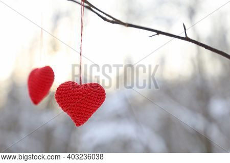 Valentine Hearts Hanging On A Tree Branch In Winter Forest. Two Red Knitted Hearts In Sunlight, Symb
