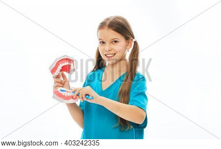 Positive Girl In A Blue T-shirt Showing How To Properly Brush Her Teeth Using An Anatomical Model Of