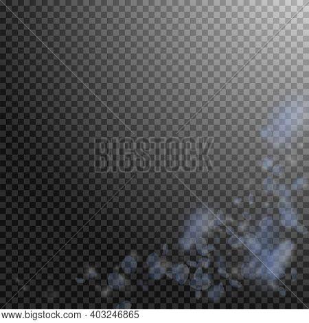 Light Blue Flower Petals Falling Down. Cute Romantic Flowers Corner. Flying Petal On Transparent Squ
