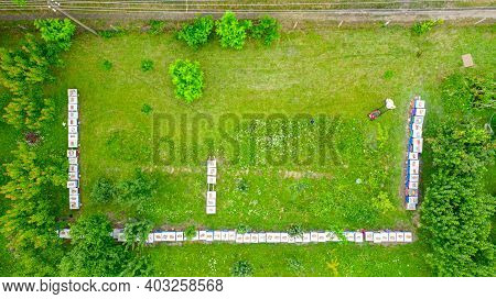 Above View On Beekeeper As He Is Cutting Grass Among Beehives Arranged In A Row, Line, Bee Colony, W