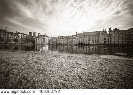 The Hague, The Netherlands - November 10, 2020: An Abandoned Park By The Courtyard, No People, Only