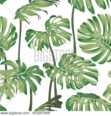 Monstera Leaves. Seamless Tropical Pattern With Exotic Leaves. Bright And Summer Pattern With Monste