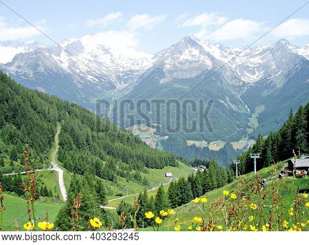 Yellow Flowers And Meadows; In The Background The South Side Of The Zillertal Alps In South Tyrol, I