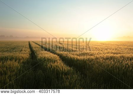 Sunrise field landscape Nature fog sun Nature landscape Nature landscape sunset Nature background Nature background Nature landscape Nature landscape countryside Nature background Nature landscape background Nature background landscape Nature background.