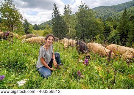 Young Beautiful Girl Shepherd Grazes A Herd Of Sheeps In A Green Field.