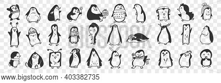 Penguin Doodle Set. Collection Of Funny Hand Drawn Cute Penguins Animals In Accessories Doing Everyd