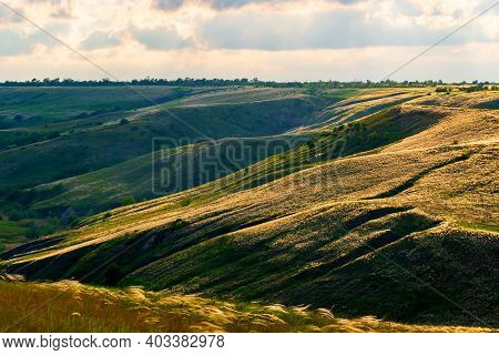 Slopes Of Hills Summer Landscape. Valley On The Hillside With Green And Feather Grass