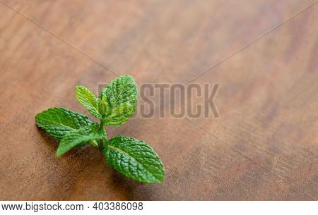 Fresh Mint  Leaf  On A Wooden Table. Peppermint Herb With  Copy Space. Top View.
