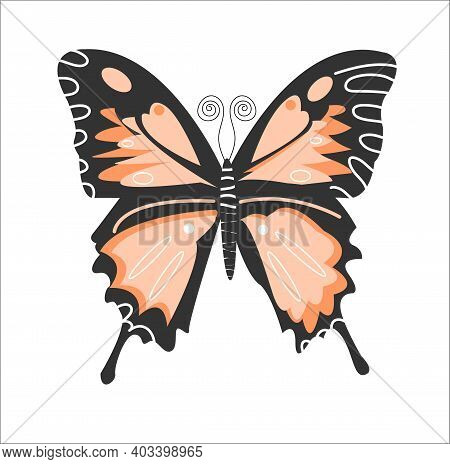Fluttering Butterfly Isolated On White Background. Vector Flat Illustration. A Bright Butterfly With