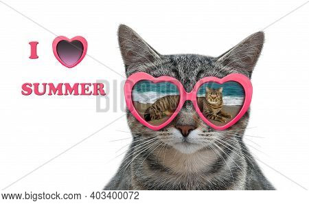 A Cat Wears Heart Shaped Sunglasses With The Reflection Of A Sea In Them. I Love Summer. White Backg