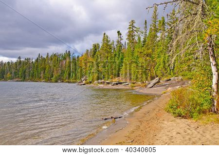 Sandy Beach On A North Woods Lake