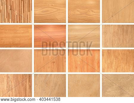 Collection Natural Interior With Wood Wall,color Wood Samples. Сatalog Of Wood Materials For Design